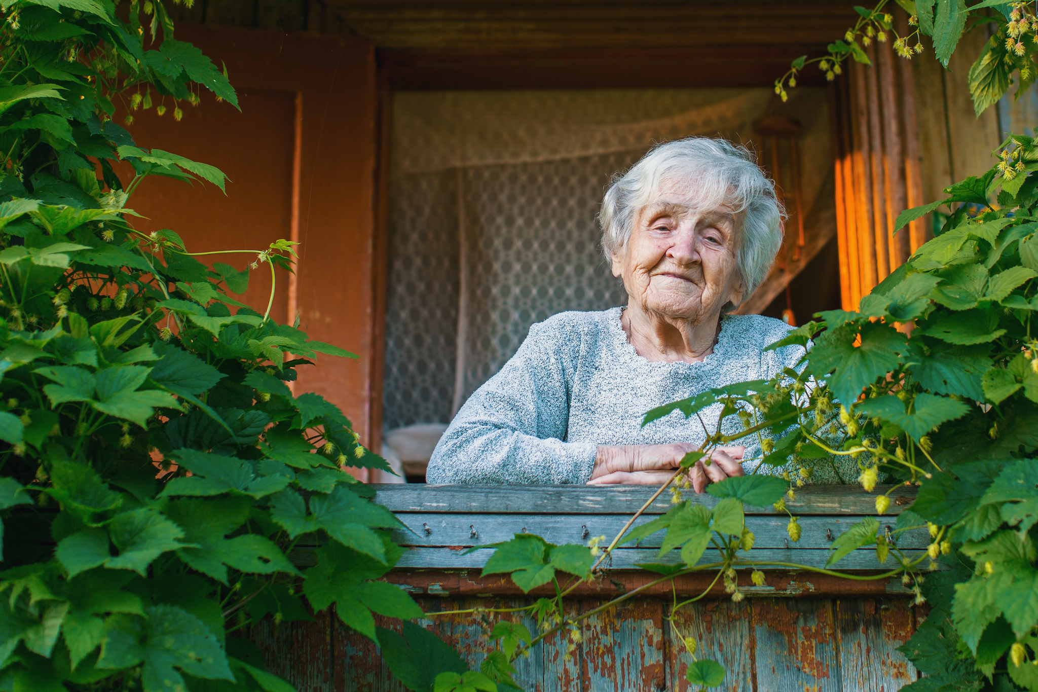 grandma_window