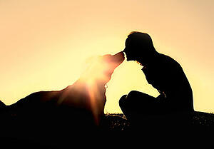 pet-loss-grief-dog400